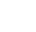 Copy of Dubai Safarift logo